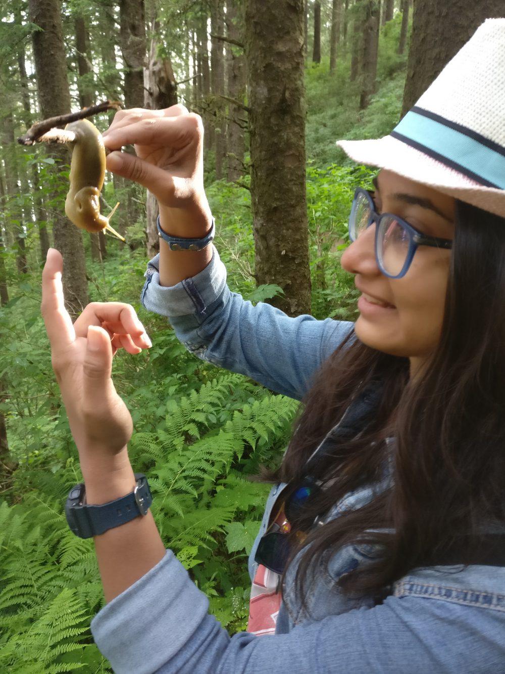 Banana Slug Oregon Coast