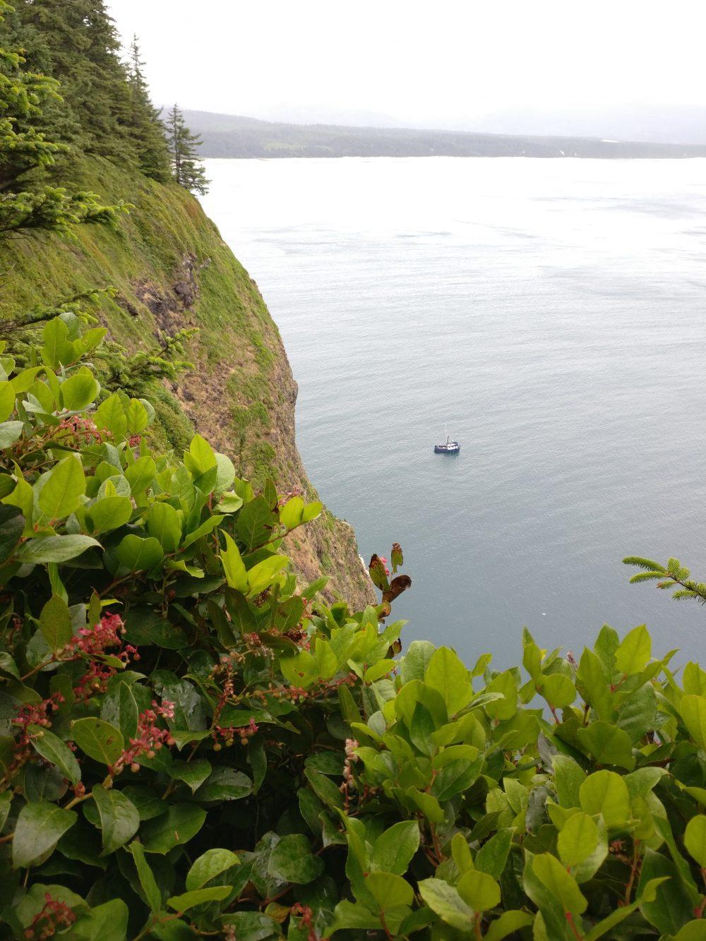 The Oregon Coast 2