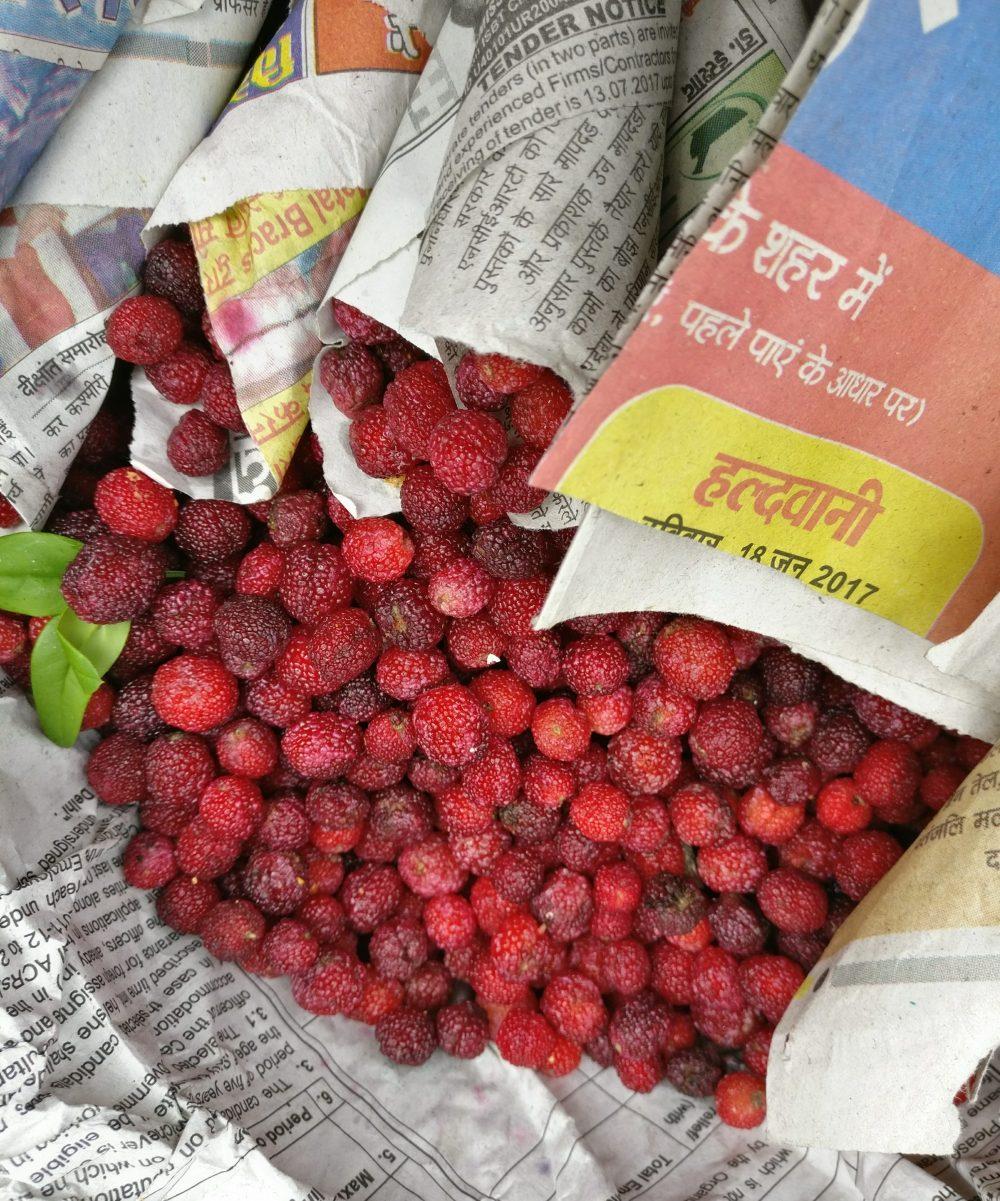 Wild Berries Sherbet Kaphal Boxberry Kumaoni 1