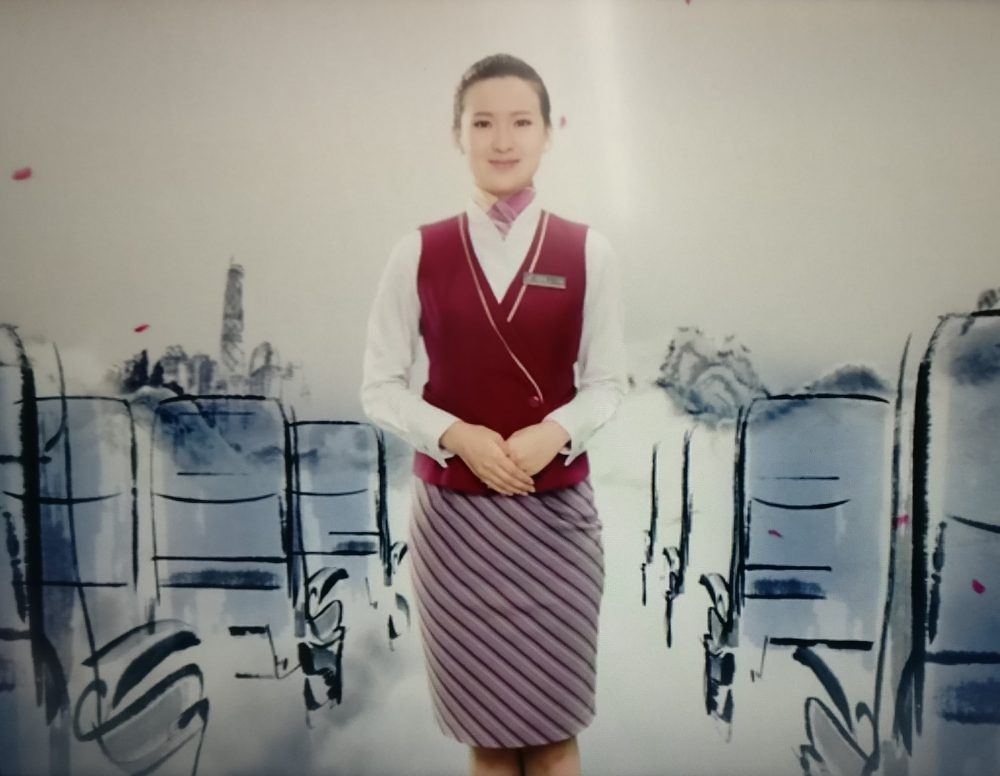 China Southern Airlines The Cabin Crew Air Hostess