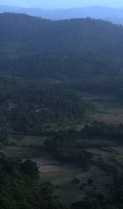 Rejuvenating Solo Trip To Coorg From Bangalore