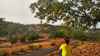 Jawhar - Maharashtra - India