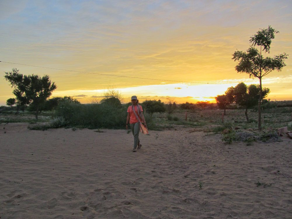 Thar Desert - Rajasthan - India