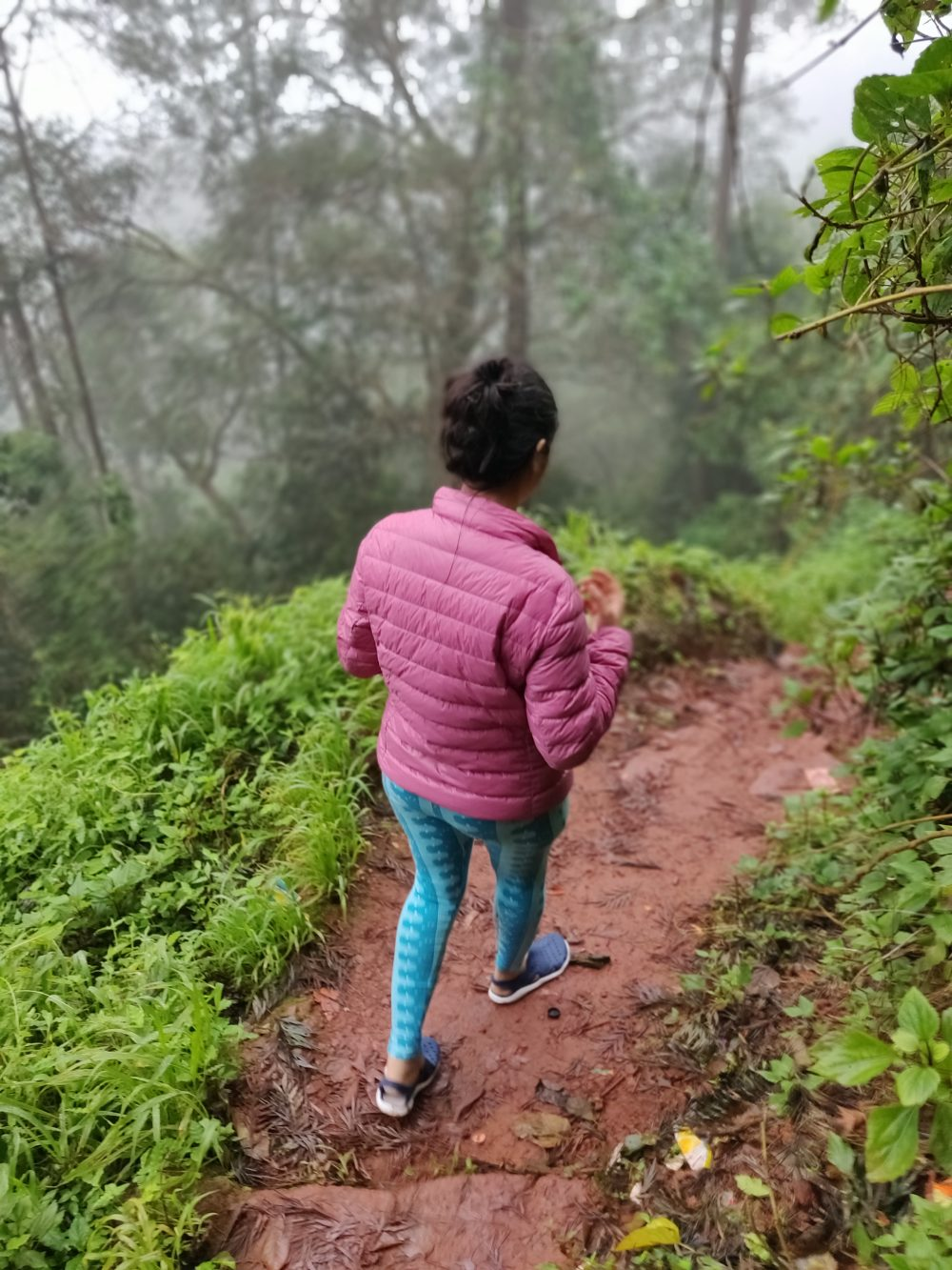 Trekking Tableland Panchgani
