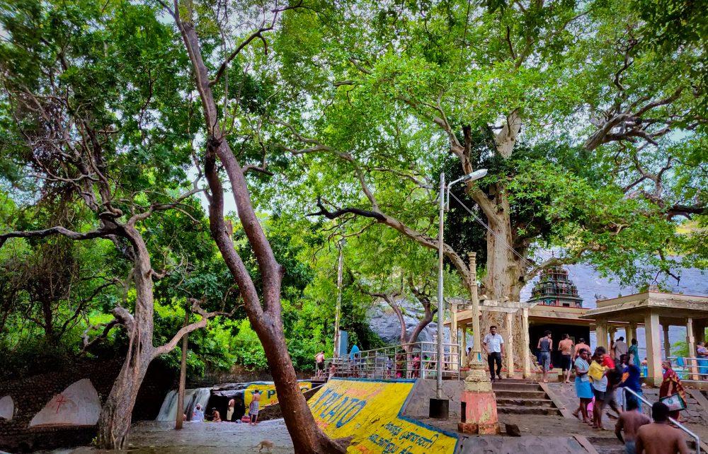 Puli Aruvi Tiger Falls