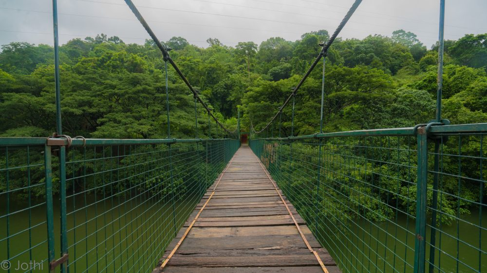 Thenmala Hanging Suspension Bridge