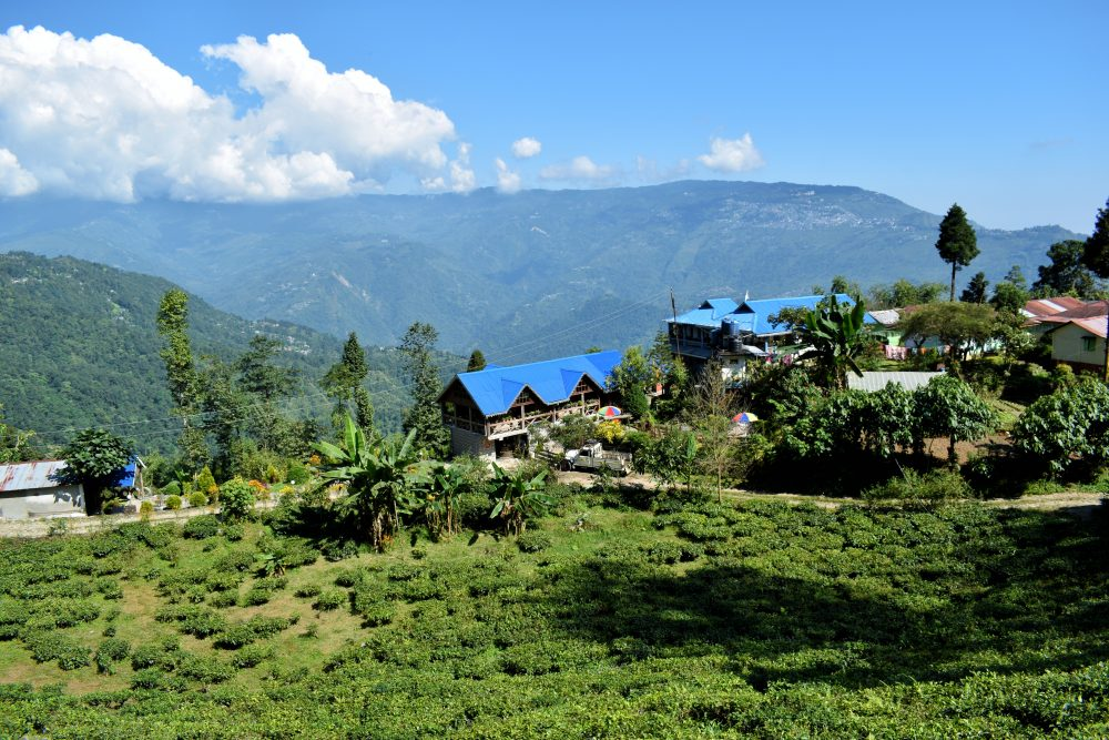 The Gorgeous Property Of Rajeshwari Homestay Skirted With Mountains